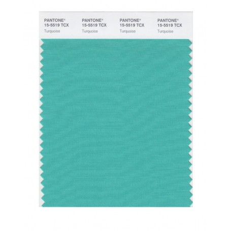 Pantone 15-5519 TCX Swatch Card Turquoise