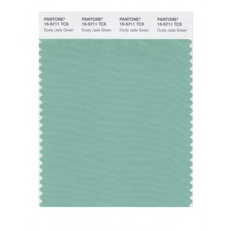 Pantone 15-5711 TCX Swatch Card Dusty Jade Green