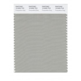 Pantone 15-6304 TCX Swatch Card Pussywillow Gray
