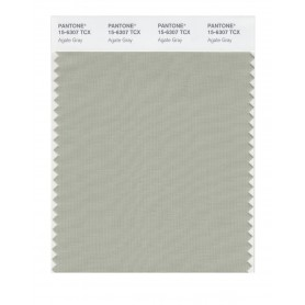 Pantone 15-6307 TCX Swatch Card Agate Gray