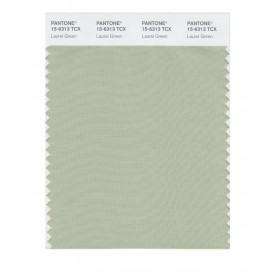 Pantone 15-6313 TCX Swatch Card Laurel Green