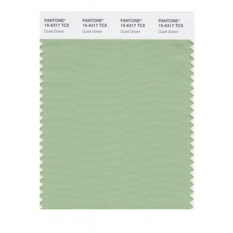 Pantone 15-6317 TCX Swatch Card Quiet Green