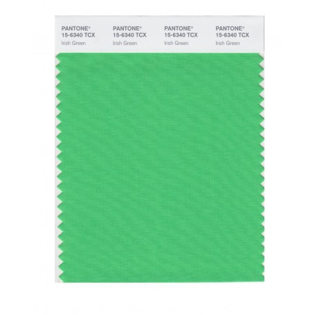 Pantone 15-6340 TCX Swatch Card Irish Green