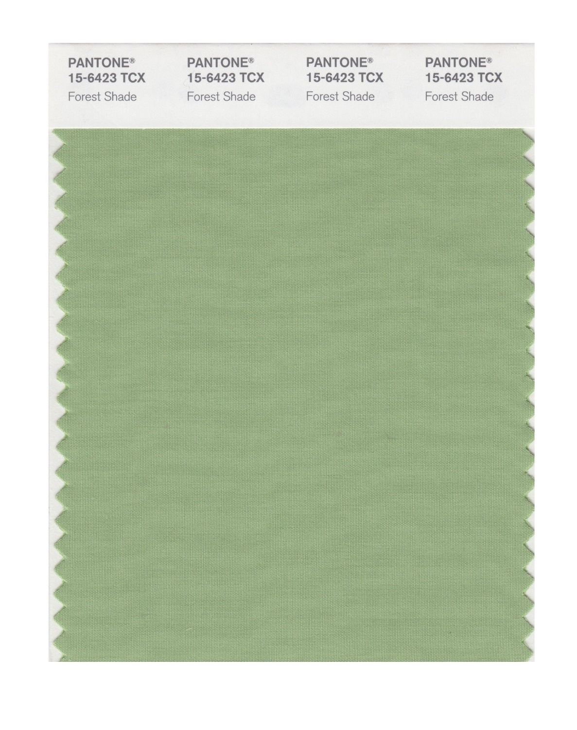 Pantone 15-6423 TCX Swatch Card Forest Shade