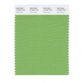 Pantone 15-6437 TCX Swatch Card Grass Green