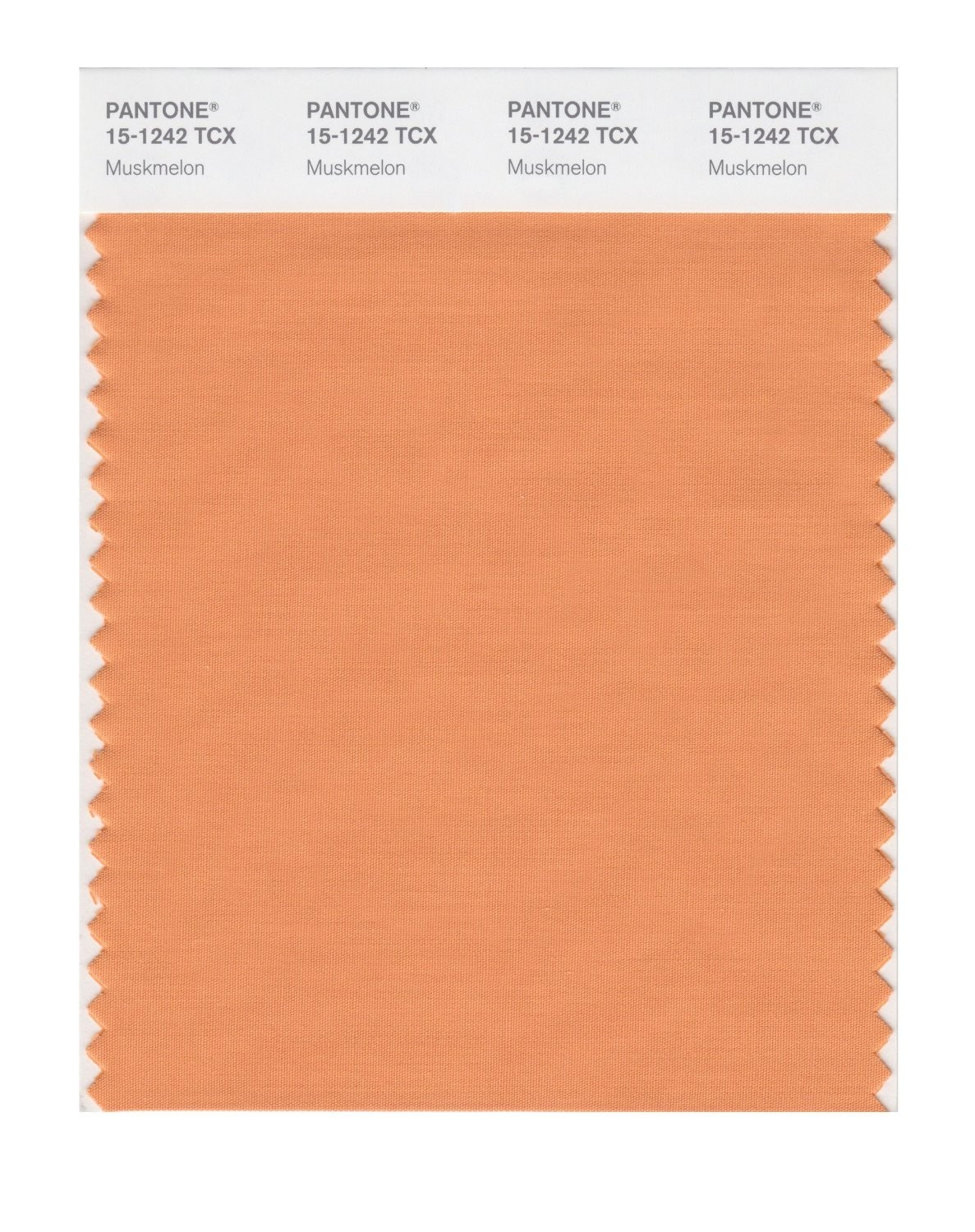 Pantone 15-1242 TCX Swatch Card Muskmelon