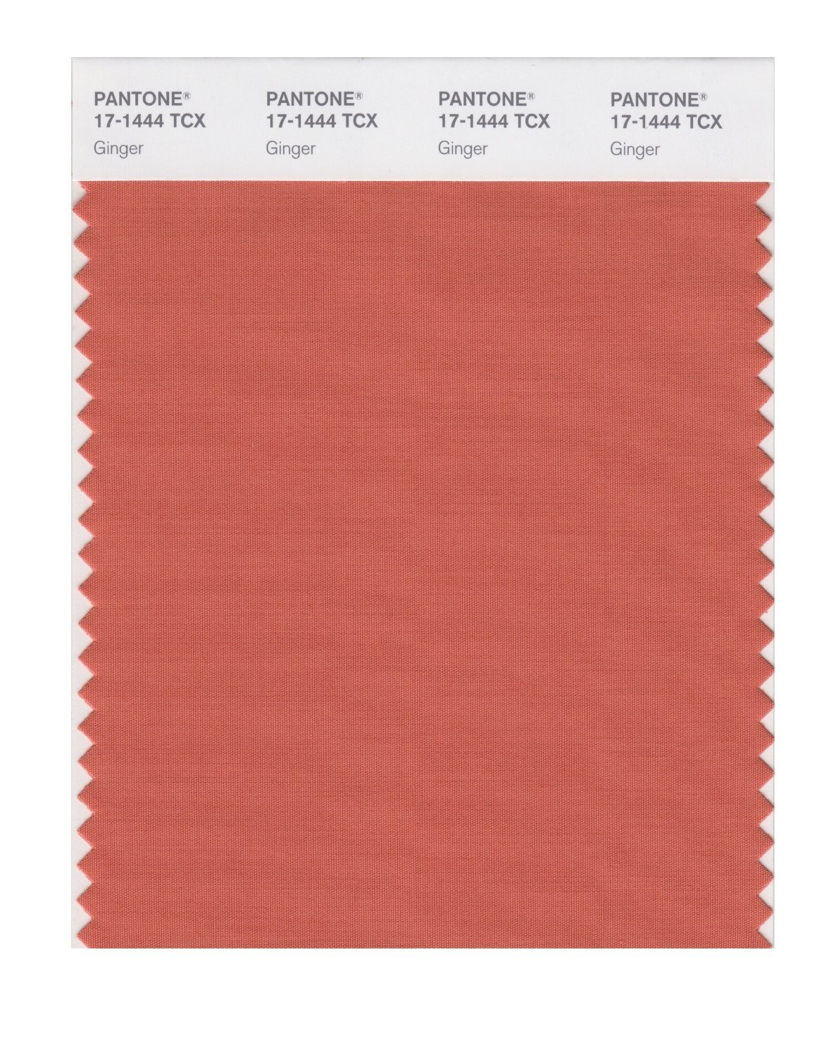 Pantone 17-1444 TCX Swatch Card Ginger