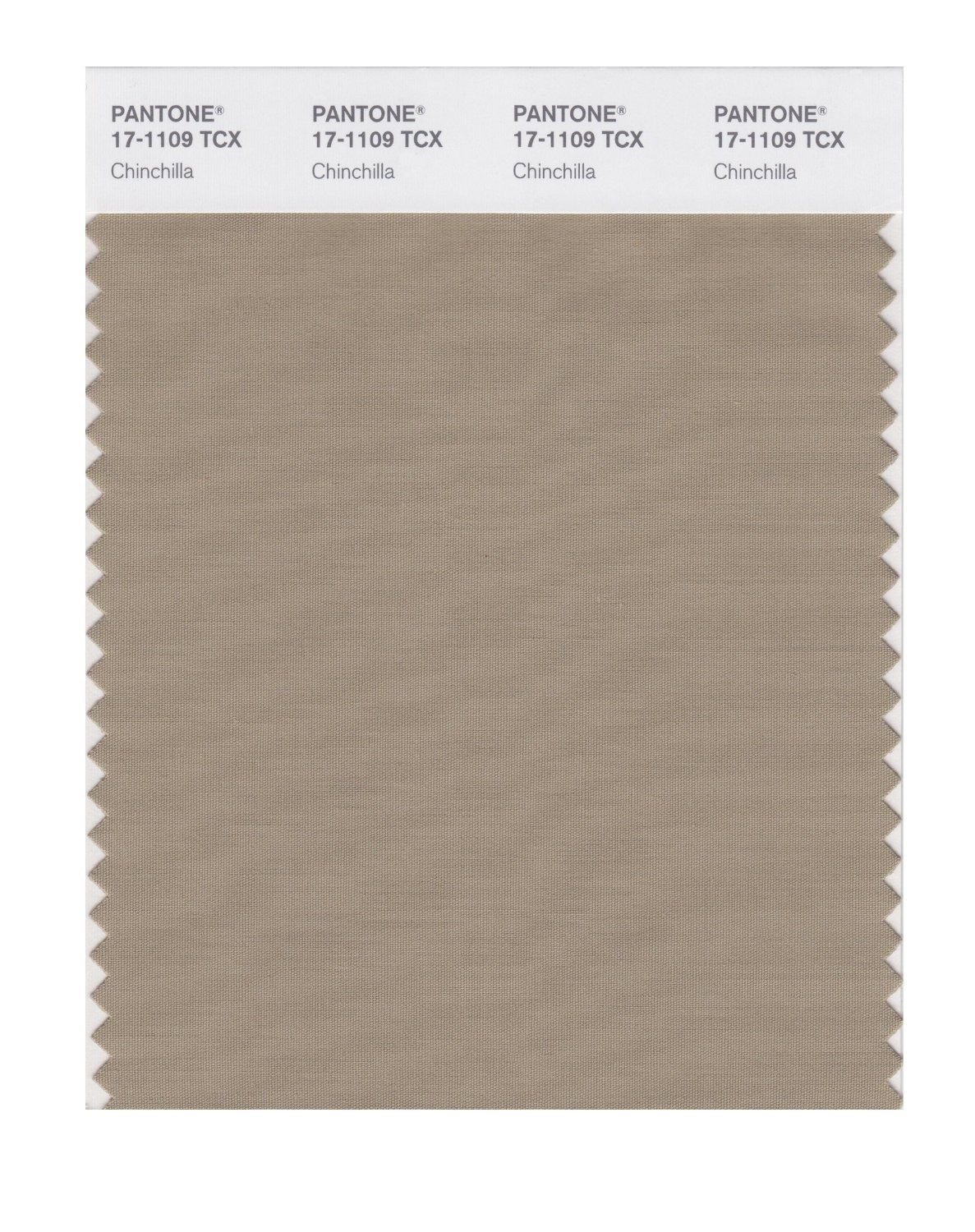 Pantone 17-1109 TCX Swatch Card Chinchilla