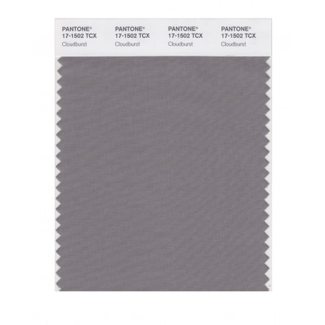 Pantone 17-1502 TCX Swatch Card Cloud Burst