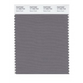 Pantone 17-1503 TCX Swatch Card Storm Front