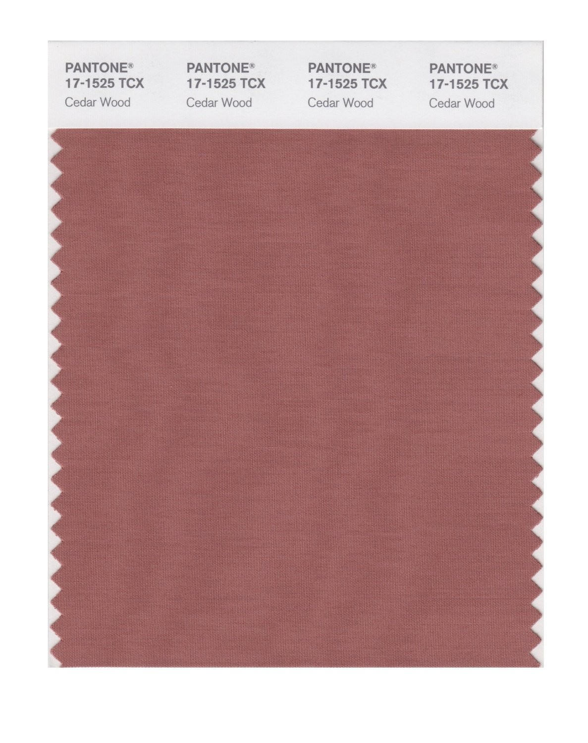 Pantone 17-1525 TCX Swatch Card Cedar Wood
