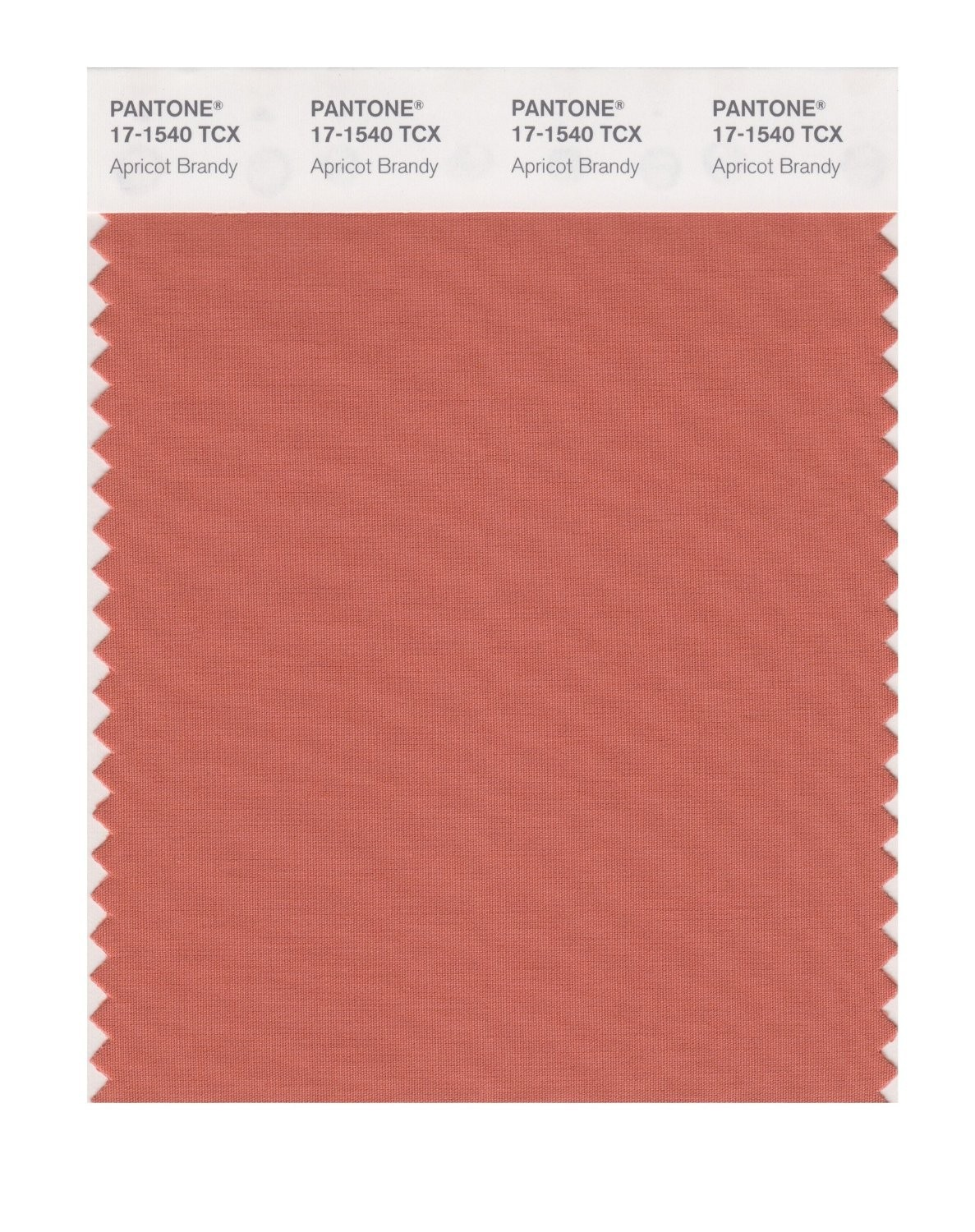 Pantone 17-1540 TCX Swatch Card Apricot Brandy