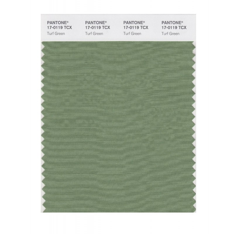 Pantone 17-0119 TCX Swatch Card Turf Green