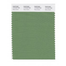 Pantone 17-0123 TCX Swatch Card Stone Green