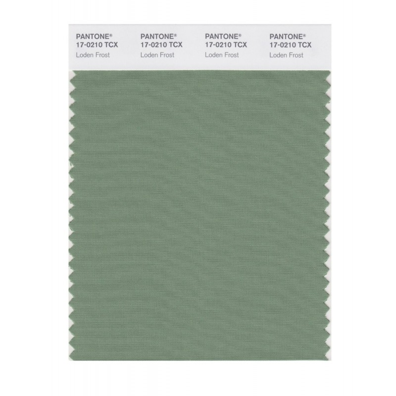 Pantone 17-0210 TCX Swatch Card Loden Frost