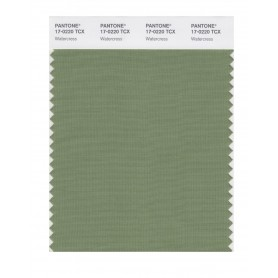 Pantone 17-0220 TCX Swatch Card Water Cress
