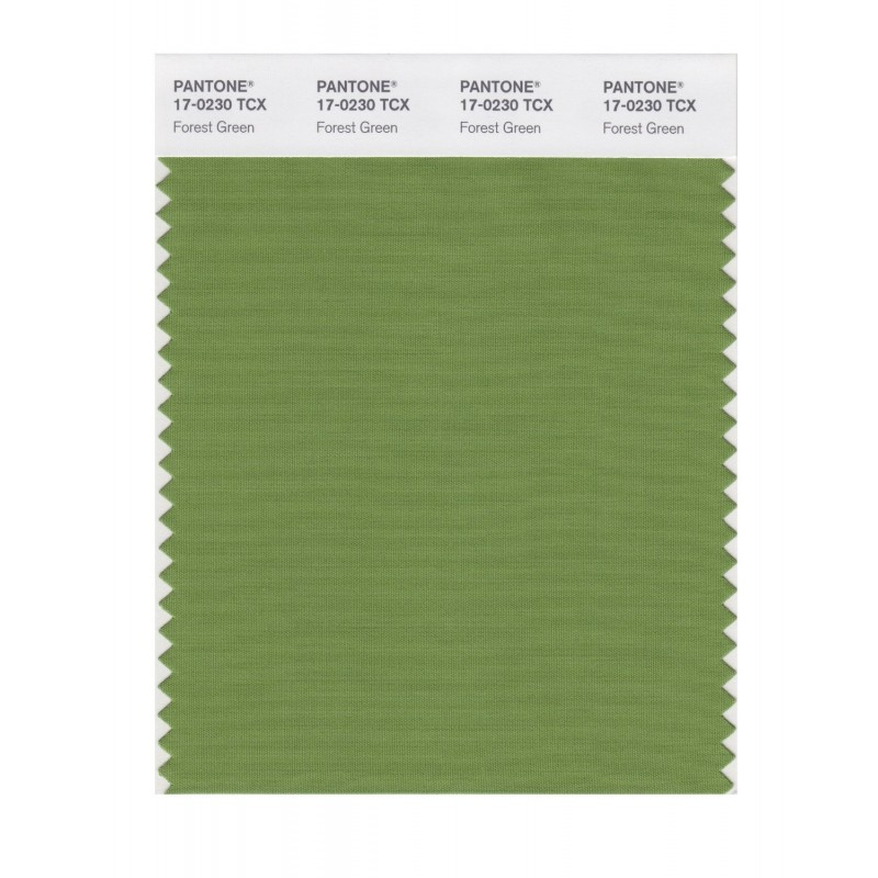 Pantone 17-0230 TCX Swatch Card Forest Green