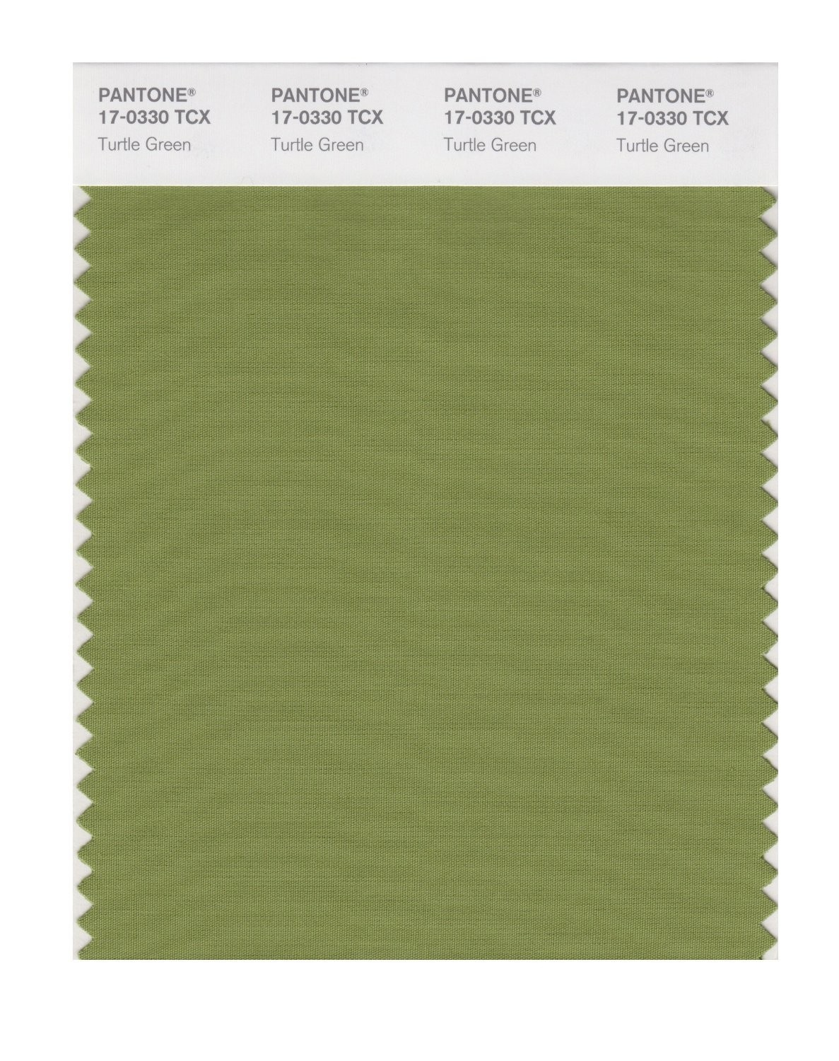 Pantone 17-0330 TCX Swatch Card Turtle Green