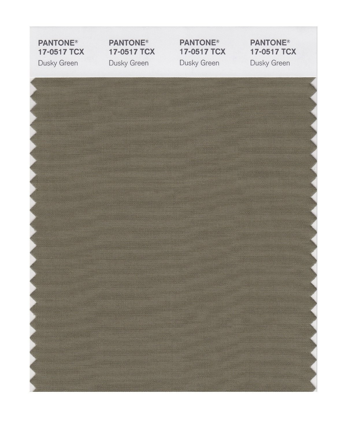 Pantone 17-0517 TCX Swatch Card Dusky Green
