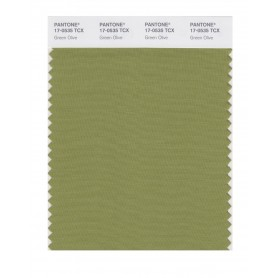Pantone 17-0535 TCX Swatch Card Green Olive