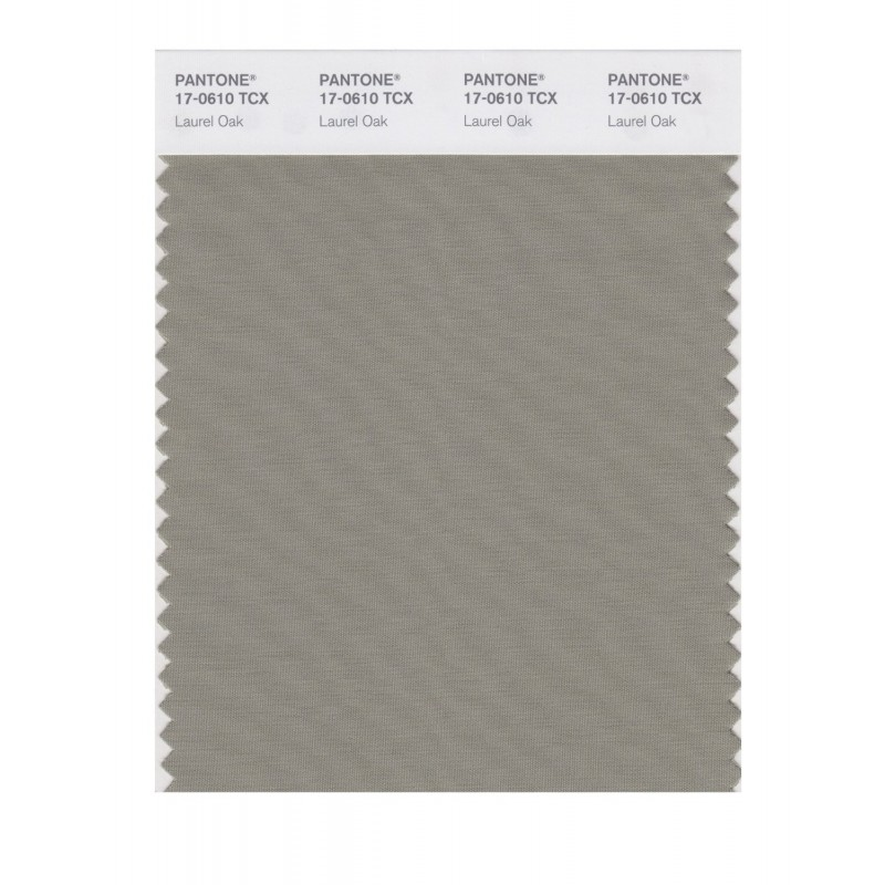 Pantone 17-0610 TCX Swatch Card Laurel Oak