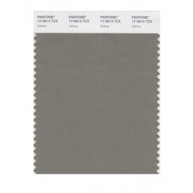 Pantone 17-0613 TCX Swatch Card Vetiver
