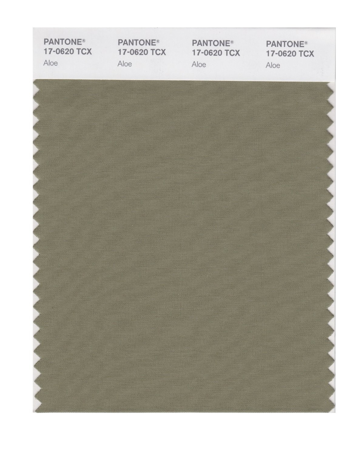Pantone 17-0620 TCX Swatch Card Aloe
