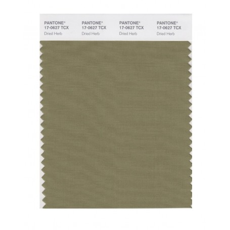 Pantone 17-0627 TCX Swatch Card Dried Herb