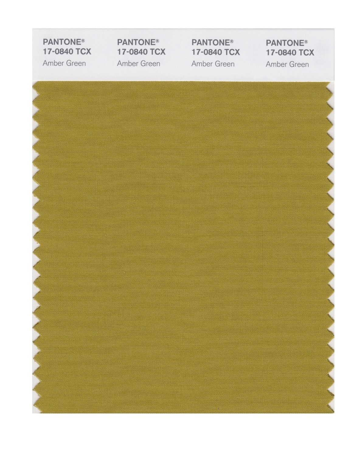 Pantone 17-0840 TCX Swatch Card Amber Green