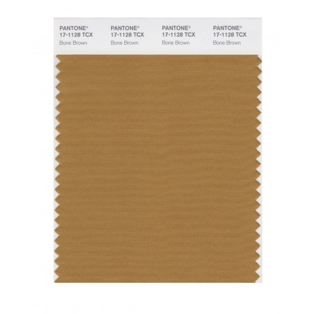 Pantone 17-1128 TCX Swatch Card Bone Brown