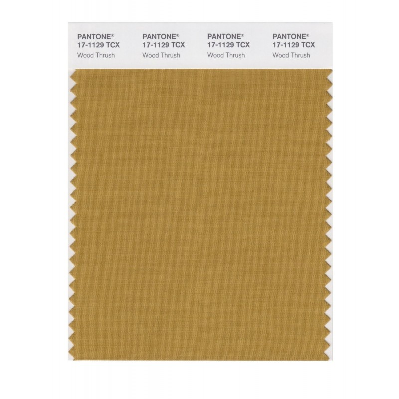 Pantone 17-1129 TCX Swatch Card Wood Thrush