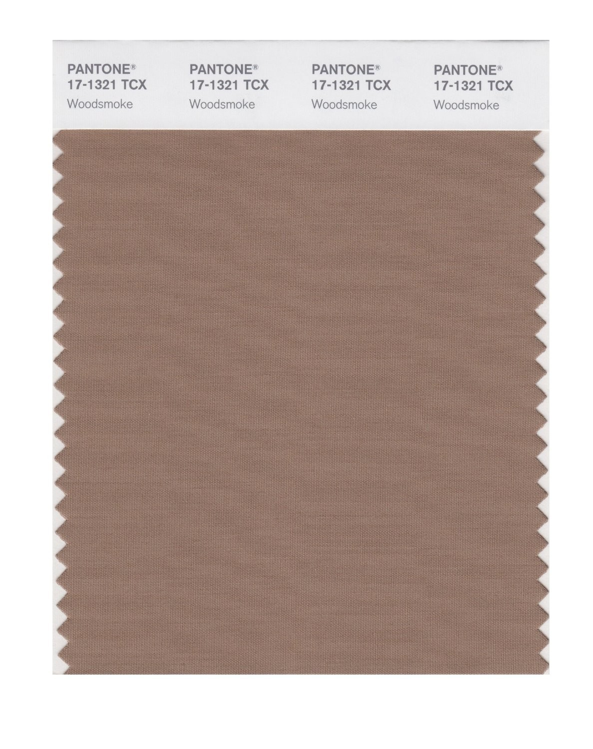 Pantone 17-1321 TCX Swatch Card Woodsmoke