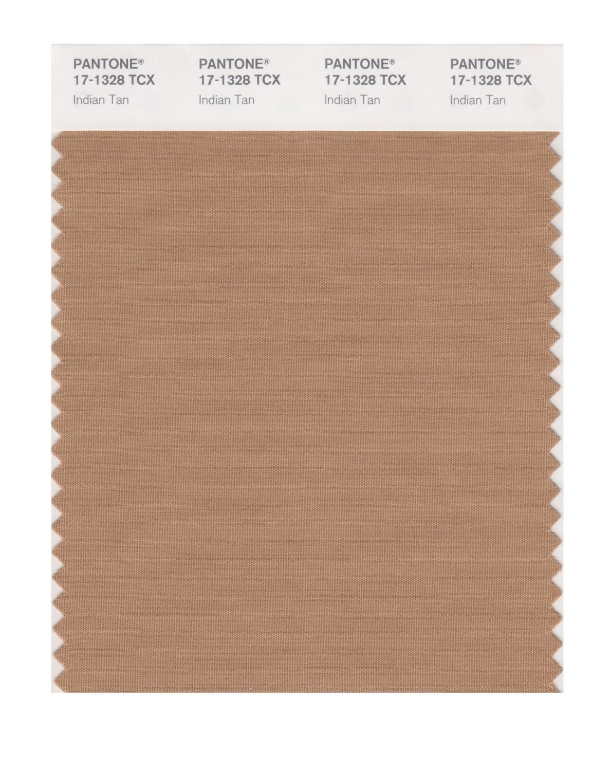 Pantone 17-1328 TCX Swatch Card Indian Tan