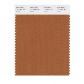 Pantone 17-1340 TCX Swatch Card Adobe