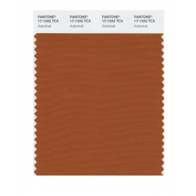 Pantone 17-1342 TCX Swatch Card Autumnal
