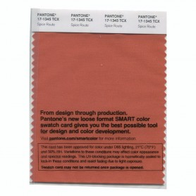 Pantone 17-1345 TCX Swatch Card Spice Route