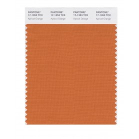 Pantone 17-1353 TCX Swatch Card Apricot Orange
