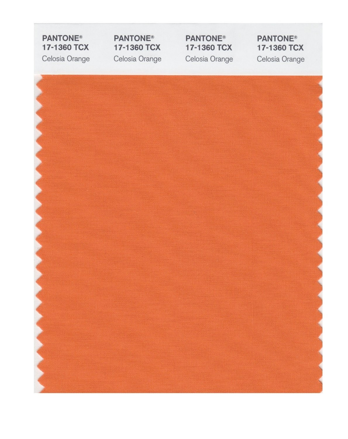 Pantone 17-1360 TCX Swatch Card Celosia Orange