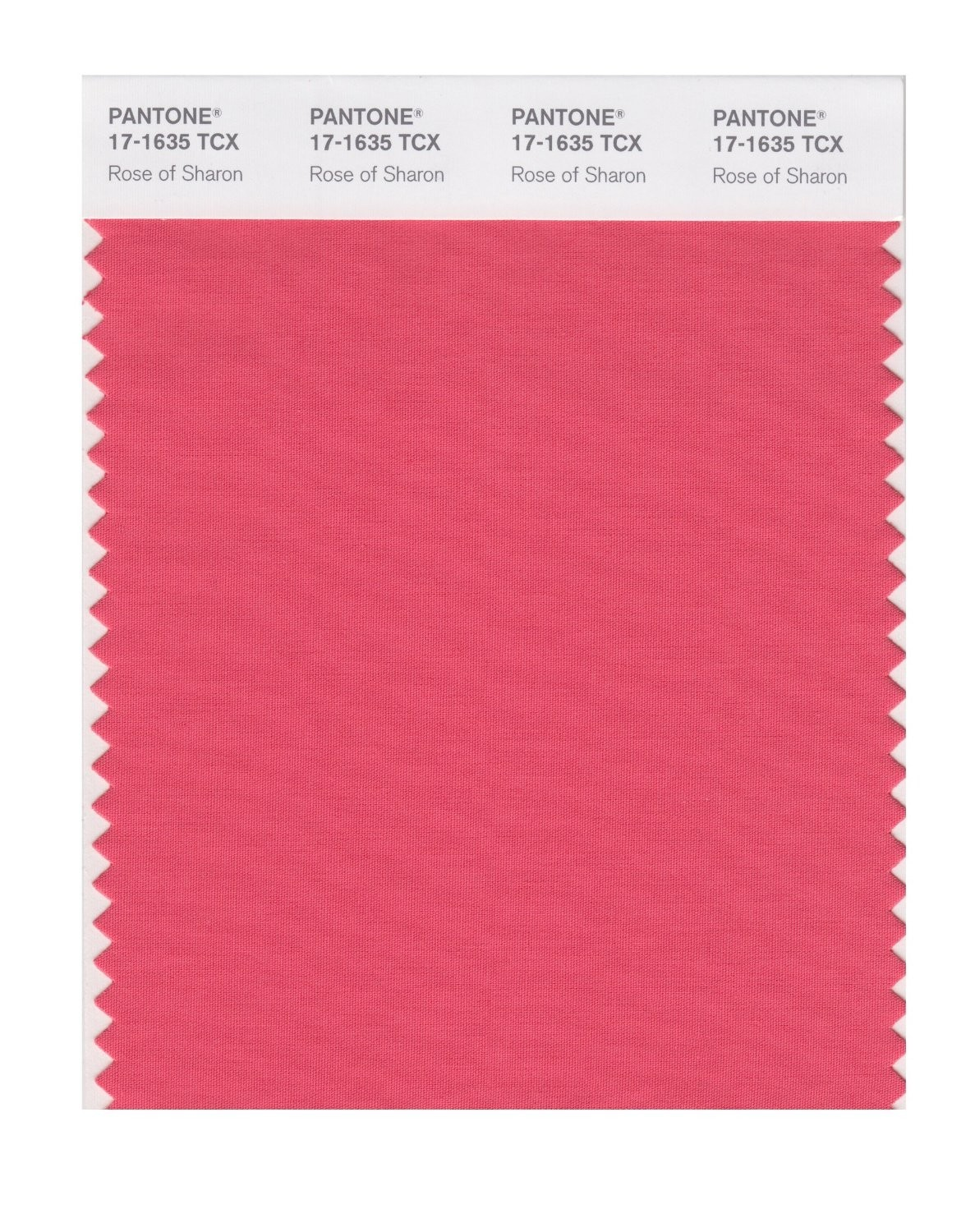 Pantone 17-1635 TCX Swatch Card Rose Of Sharon