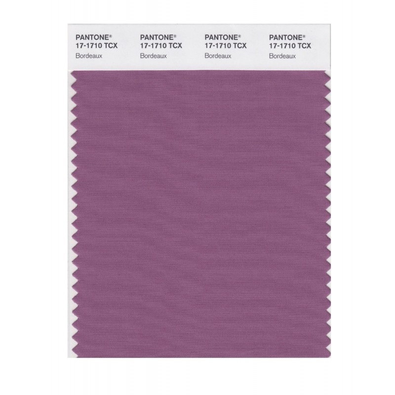 Pantone 17-1710 TCX Swatch Card Bordeaux