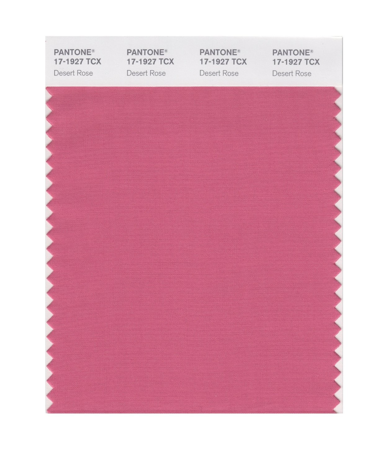 Pantone 17-1927 TCX Swatch Card Desert Rose