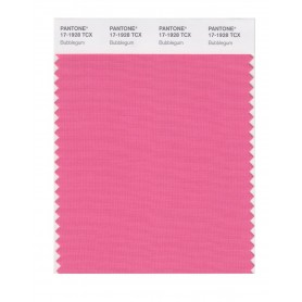 Pantone 17-1928 TCX Swatch Card Bubblegum
