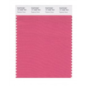 Pantone 17-1929 TCX Swatch Card Rapture Rose