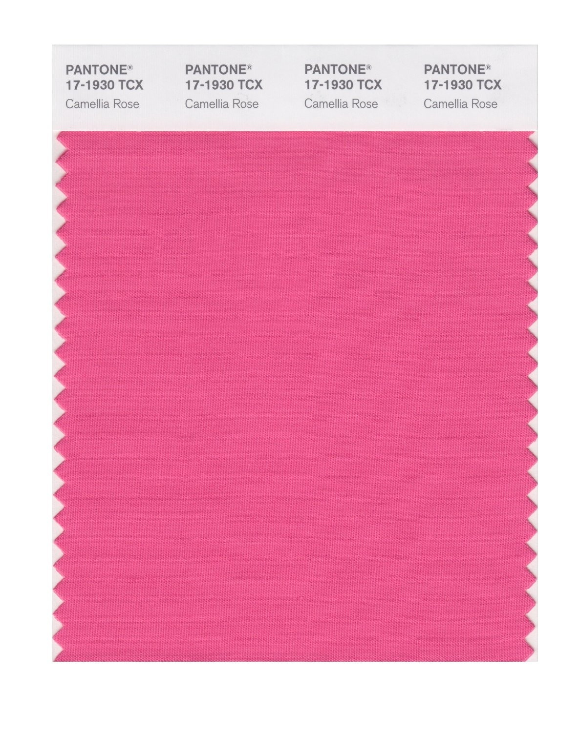 Pantone 17-1930 TCX Swatch Card Camellia Rose