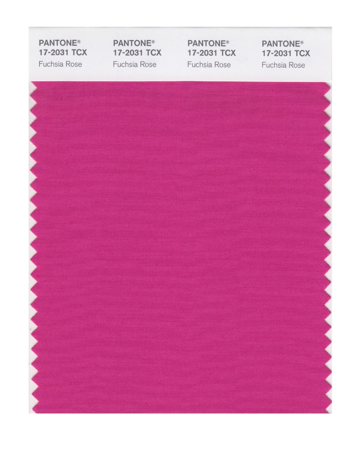 Pantone 17-2031 TCX Swatch Card Fuchsia Rose