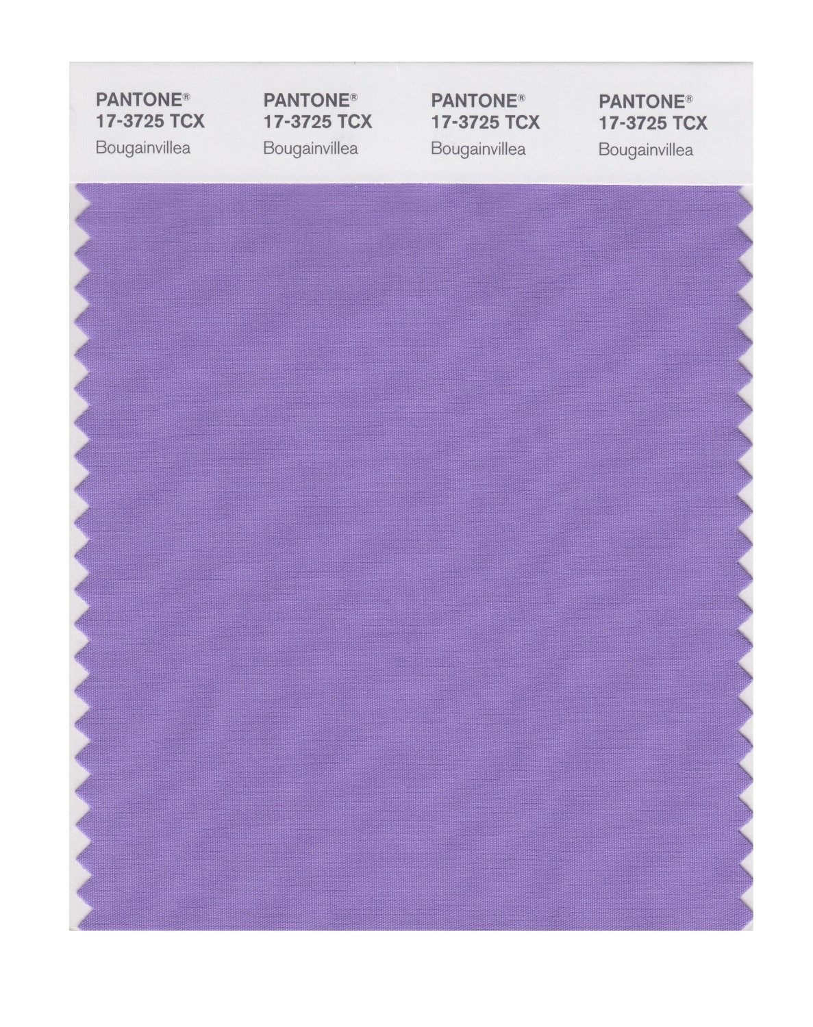 Pantone 17-3725 TCX Swatch Card Bougainville