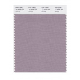 Pantone 17-3808 TCX Swatch Card Nirvana