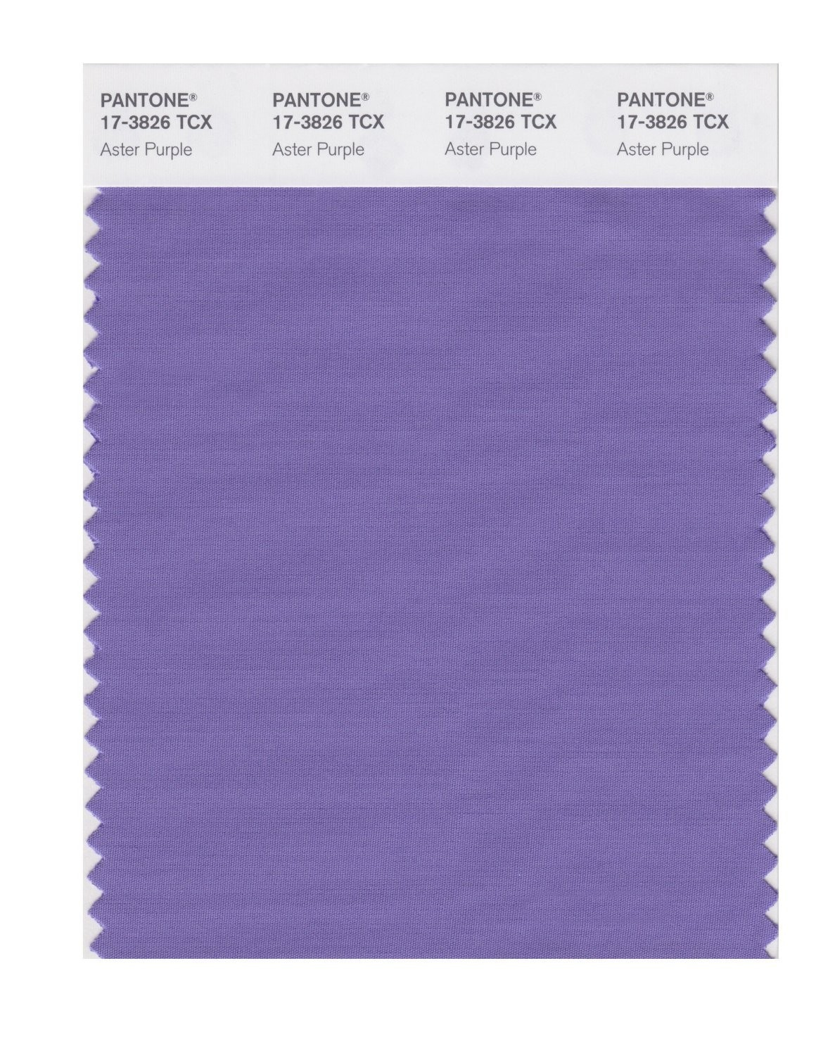 Pantone 17-3826 TCX Swatch Card Aster Purple