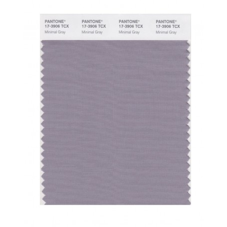 Pantone 17-3906 TCX Swatch Card Minimal Gray