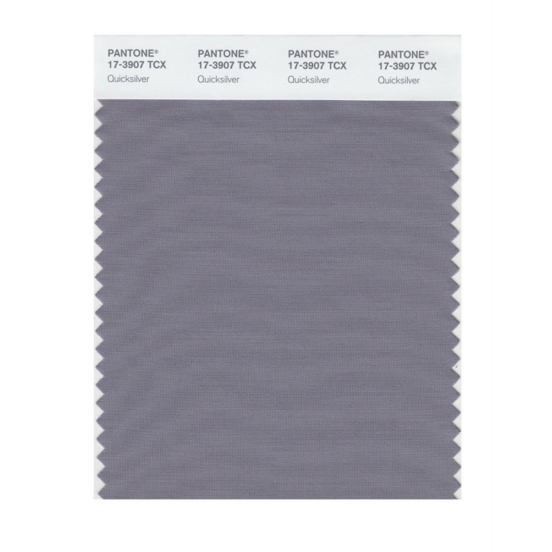 Pantone 17-3907 TCX Swatch Card Quicksilver